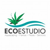 Ecoestudio Aquascaping