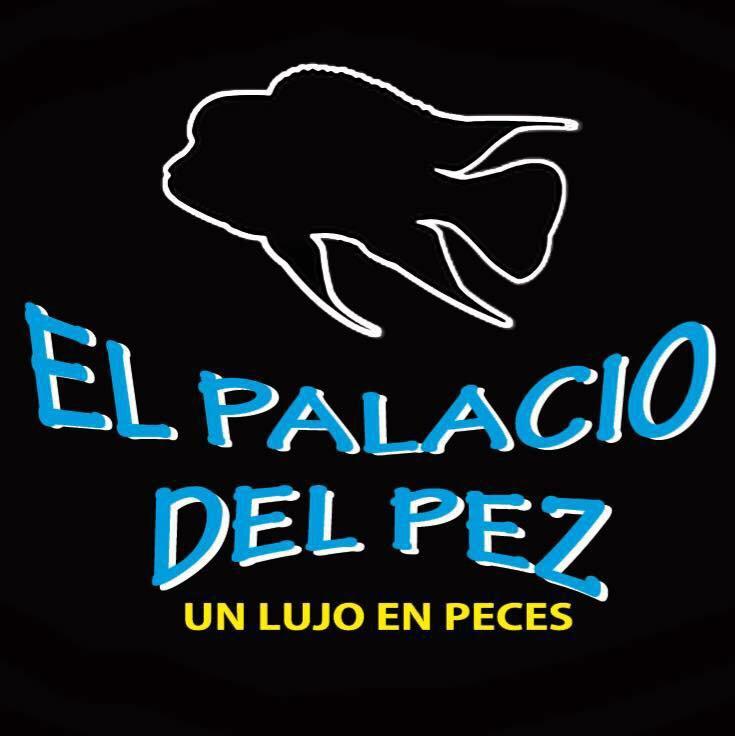palacio_del_pez.jpg