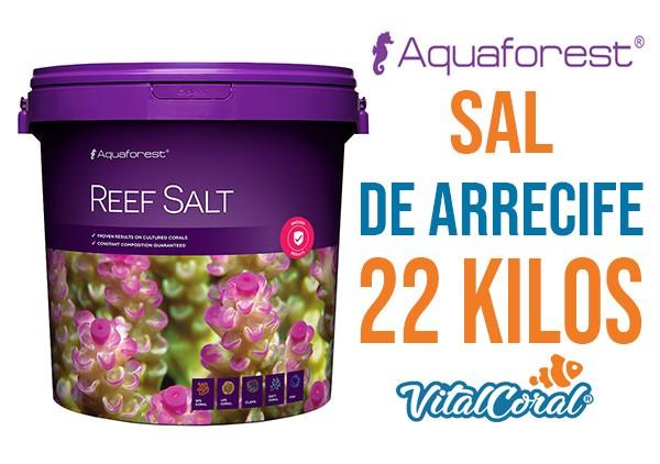 Sal de arrecife de 22 kilos  para acuarios marinos