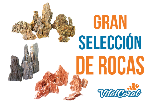 Selección de rocas para acuarios VitalCoral